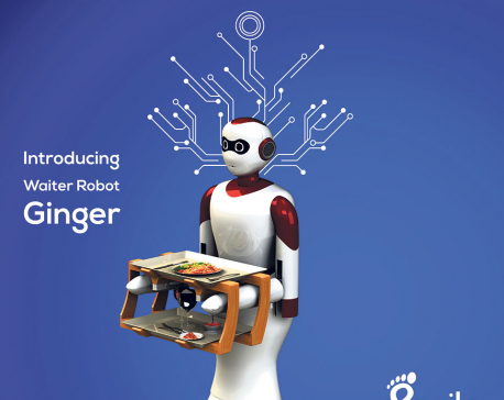 Ginger, the waiter robot, made in Nepal