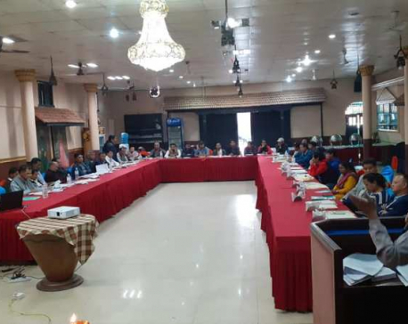 'Nepali Traditional Craftsmanship Seminar-2019' concluded