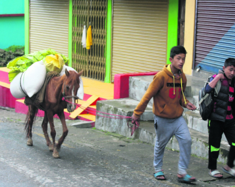 Indians transport everyday commodities from Nepal to Darjeeling