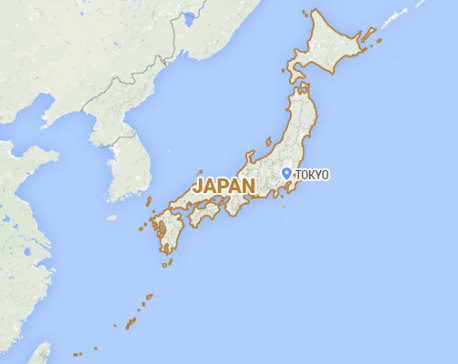 Strong earthquake hits Japan, no tsunami warning