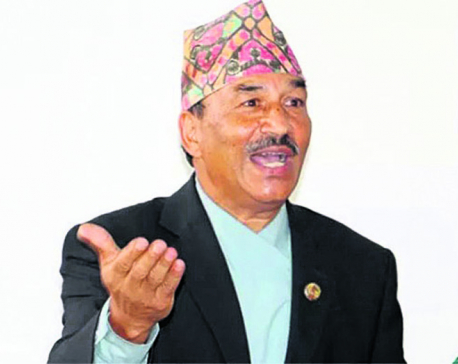 Date for local poll should be announced: Chair Thapa