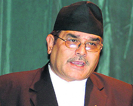 House directs govt to take action against Lokman Singh Karki