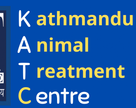 NGO operators in Kathmandu deny embezzlement of UK donation meant for treatment of street dogs, claim that they are not local board of KAT UK
