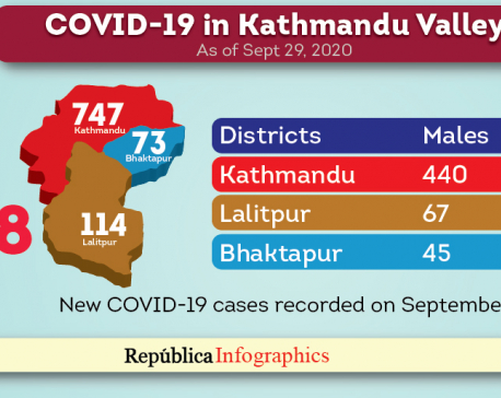 Kathmandu Valley records highest single-day spike of 934 new cases of COVID-19