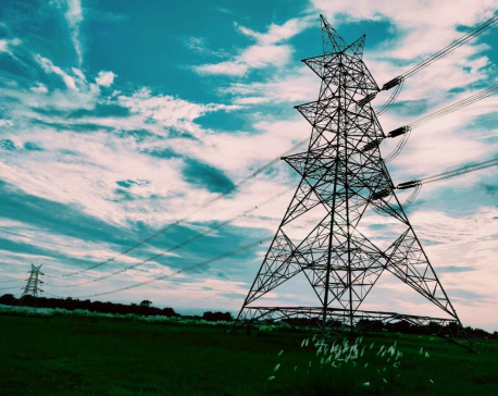 First phase construction of Koshi Corridor 220 KV transmission line completed