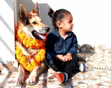 Kukur Tihar and Narake Chaturdashi being observed today