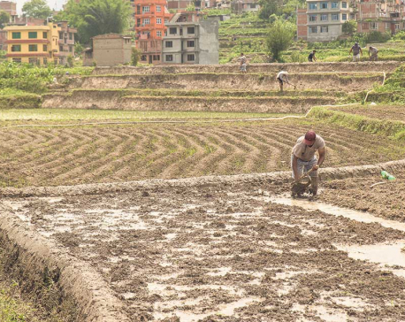What is lacking in Nepal's land reform initiative?