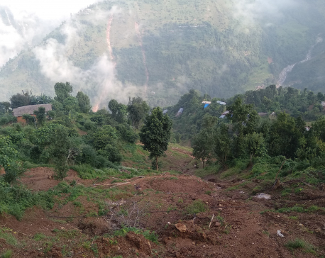 Art therapy to heal wounds of July landslides in Gulmi