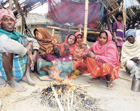 Cold starts taking its toll in Madhes