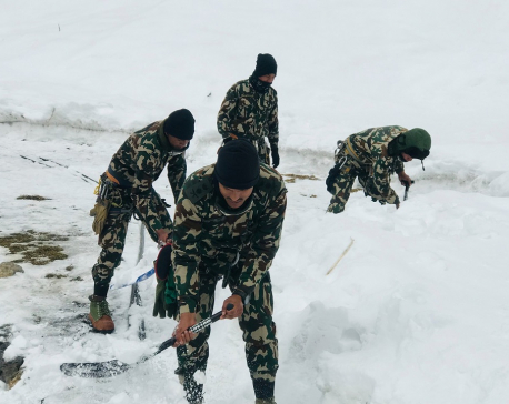 Nepal Army begins rescue and search operation in Annapurna region ( with photos)