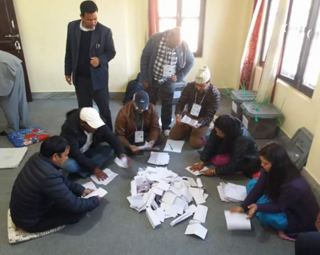NA election vote counting begins