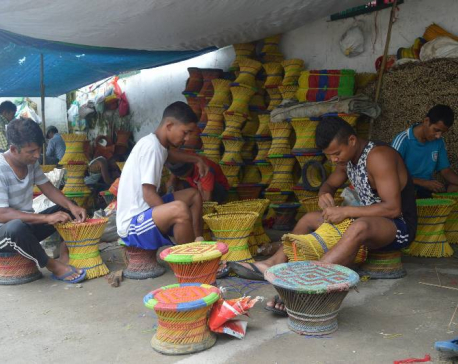 Making mudas: Source of income for prisoners