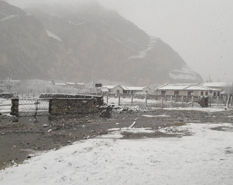 Life hit hard as snow blankets Mustang (Photo feature)
