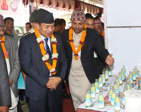 Vice President insists on modernization of agro sector