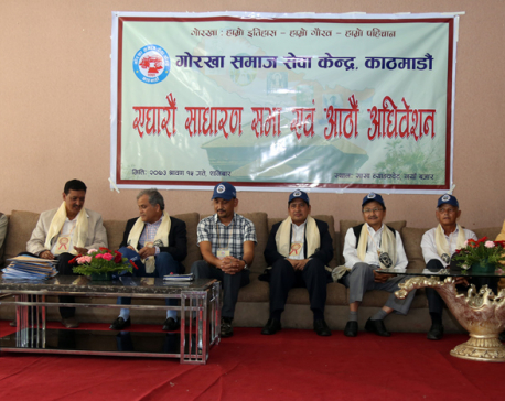 Slim chance for consensus govt: Shrestha