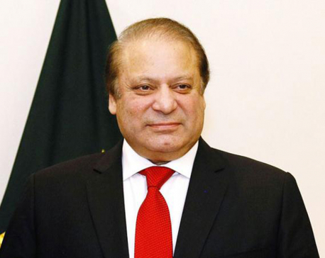 Pakistan's PM appears before panel investigating family wealth
