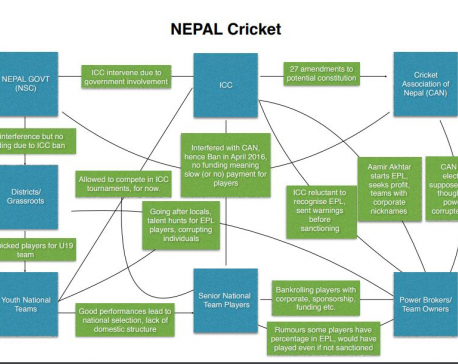 Is the passion for cricket at local levels reflected by the country's officials?