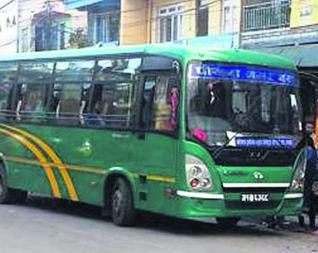 Night bus also in Pokhara