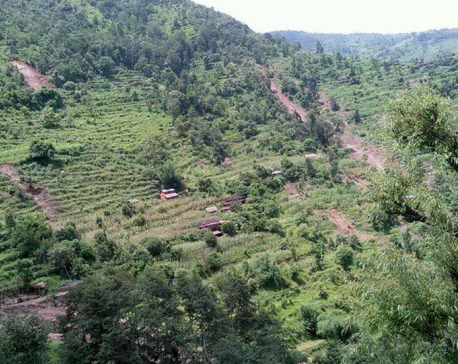 Scores displaced by landslides in Nishikhola rural municipality