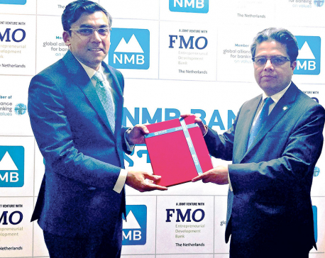 NMB Bank signs loan mandate with IFC