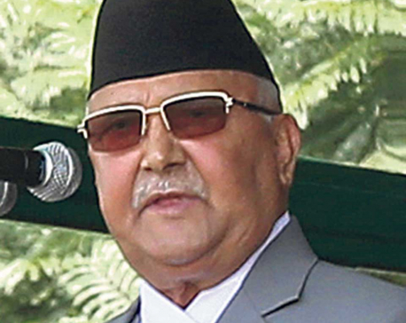 Govt won't tolerate use of Nepal as guinea pig over rights: PM