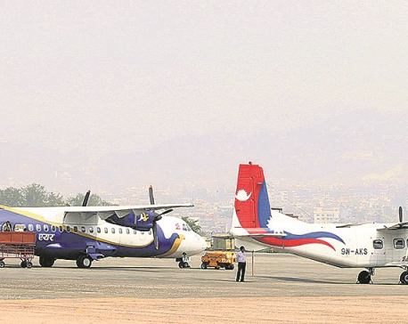 Domestic airlines cut fare by 50%