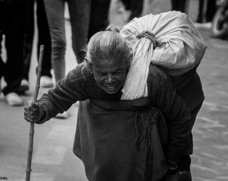 A Gray Old Woman