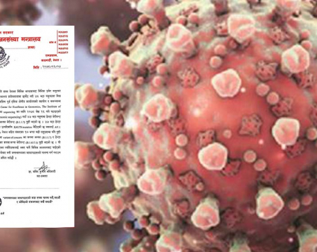 New mutation of Delta variant of COVID-19 detected in Nepal