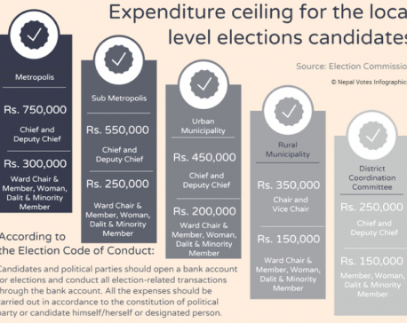 Polls expenditure ceiling criticized as impractical