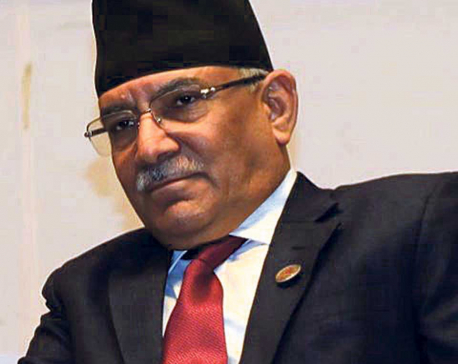 NCP Chair Dahal inaugurates Umbrella Street