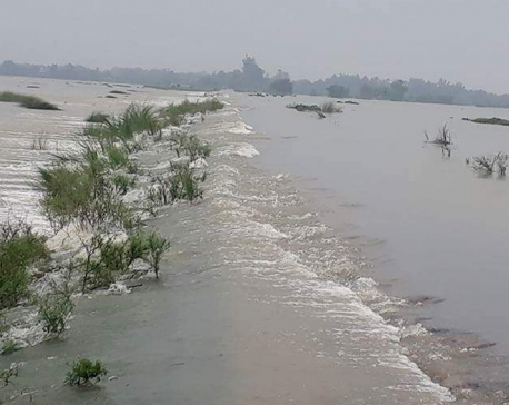 6 drowned as vehicle submerged in river