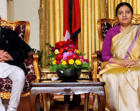 No complaint can be filed against president's discretionary rights: PM Oli