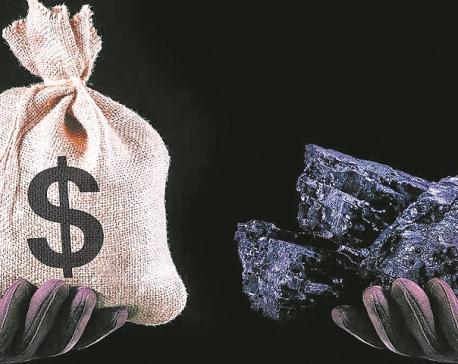 True Price of Carbon