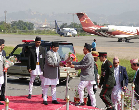 Vice President Pun returns home