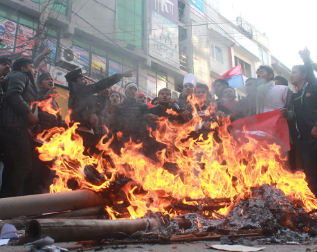 PM's effigy burned against constitution amendment bill (photo/video)
