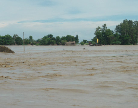Six Banke VDCs at high risk of flood as Rapti River swells