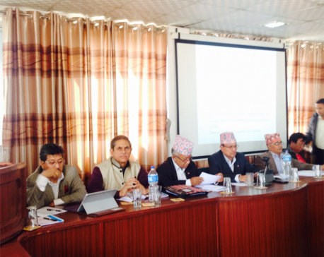 CPN- UML organizes workshop on Nepal's development in Bhaktapur