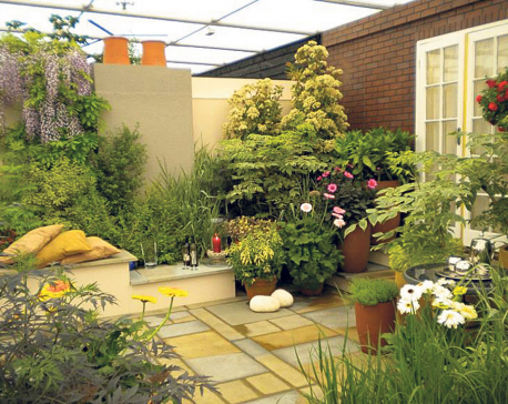 Rooftop Gardening Tips and Tricks