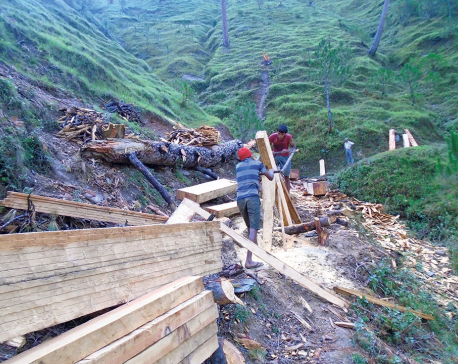 Villagers fear landslide due to rampant deforestation