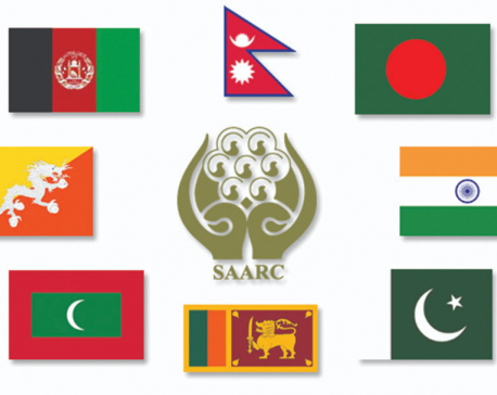 SAARC video conference on combating coronavirus to take place on Sunday: report