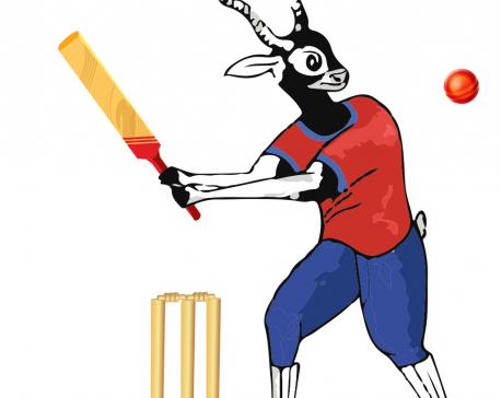 Malla inspires Nepal to record win