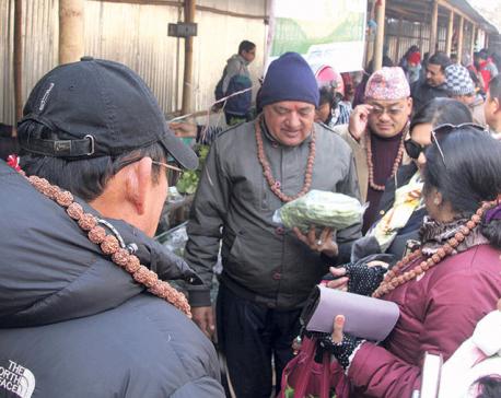 Organic  Sanibarey Hatiya kicks off