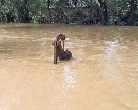 150 families out of contact as swollen Saptakosi swamps Saptari