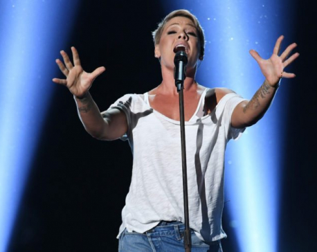 US singer Pink pledges $500K to fight Australia wildfires