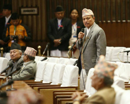 Lawmakers condemn Kanchanpur incident, demand govt to provide details
