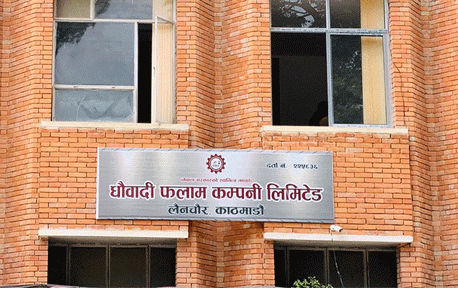 Government starts preparations to extract iron from Dhaubadi mine