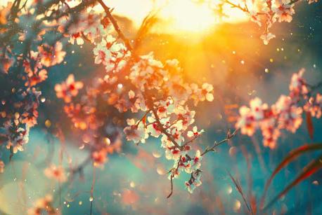 O' spring