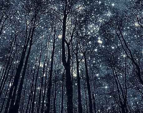 Stars of Missed Nights