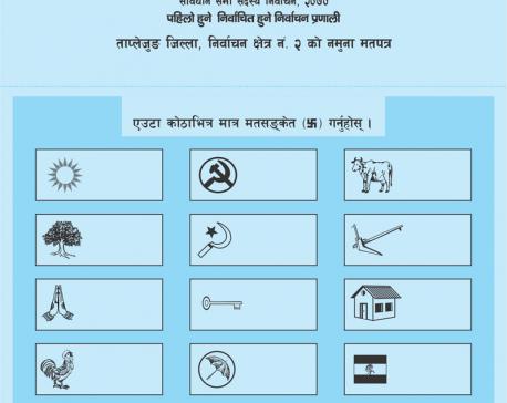 Consolidating democracy