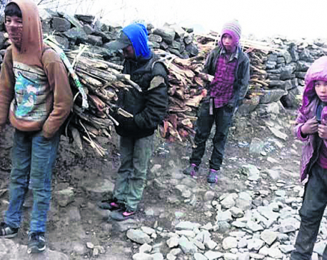 Humla children sell timbers to cover education expenses